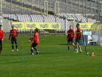 training_wuppertaler_sv_1104_11